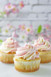 Gluten Free Vanilla Cupcake
