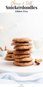 gluten free snickerdoodles pin 02